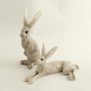 PJ small sittng and lying hare