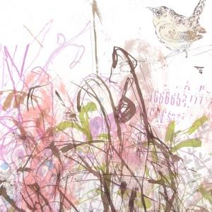 KELLY STEWART - W2 SPRING BIRD