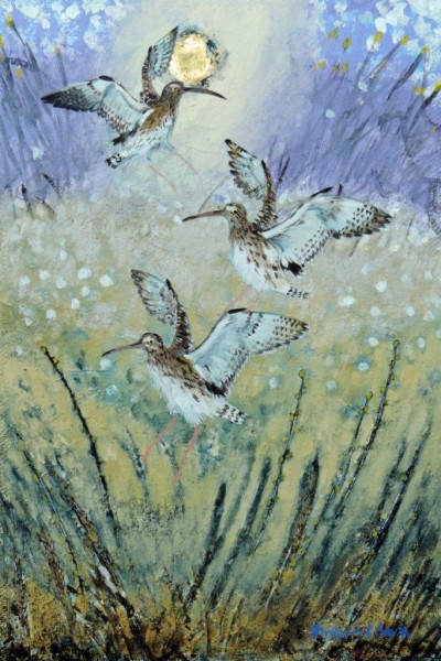 ingebjorg Smith Marsh Curlews £400 image size 26x41cm approx – Copy