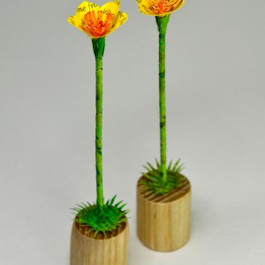 buttercup woodlets, £20 each