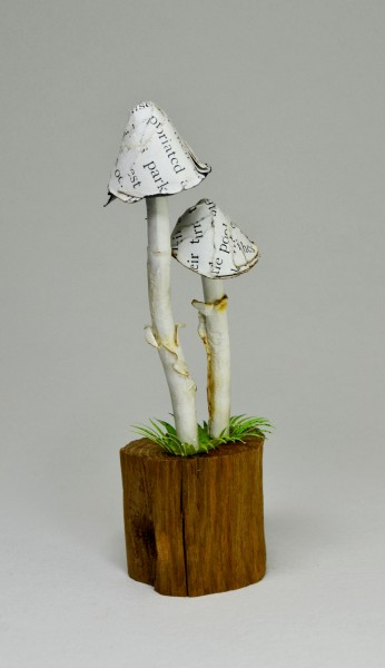 double mushrooms, £28