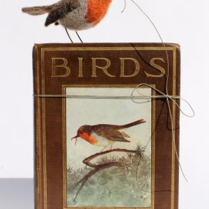 DP-Bird Book, Robin