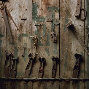 Shears, Brackley Farm, Dalmally, Argyll & Bute. March 2013. From the series Drawn To The Land.