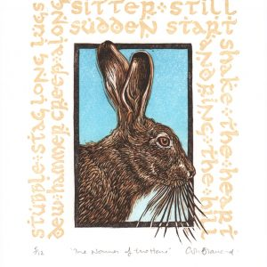 Names of the Hare smaller