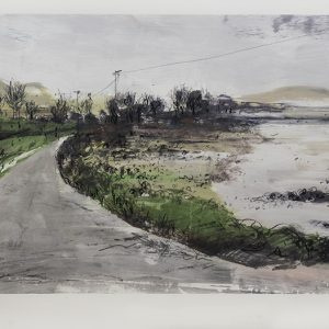 KELLY STEWARTThe Coast Road- Solway Firth