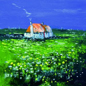2.Wee Cottage with Wildflowers, Balevullin, Tiree
