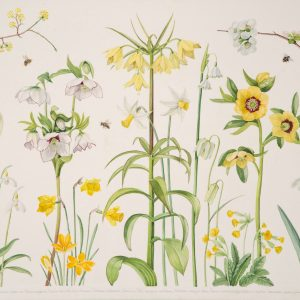 Ann Fraser Early Spring £2150 30x38 jpg